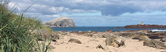 Bass Rock Friend